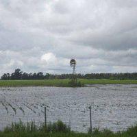 Inundaciones: el modelo agrícola quedó en el ojo de la tormenta