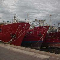 """Tras la intervención, el SOMU busca revertir """"la realidad del puerto"""""""