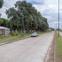Las pavimentaciones de Alvear y Bauman, en el 65 %