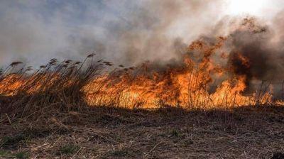 Los desastres climáticos causan U$S 1.050 millones de pérdidas al campo