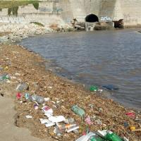Realizaron tareas de limpieza en playas del Puerto y de Constitución