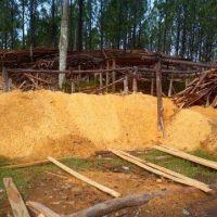 Invertirán 42,5 millones de dólares para generar energía con residuos madereros
