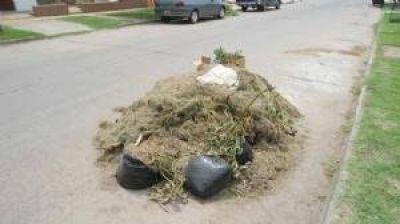 Quejas por la falta de recolección de residuos y cortes de pasto en varios sectores la ciudad