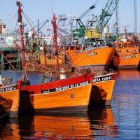 Puertos: Vidal y diputado de Carrió impulsan proyectos para reformar la ley