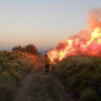 Siguen los incendios en Mendoza y van 45.000 hectáreas dañadas