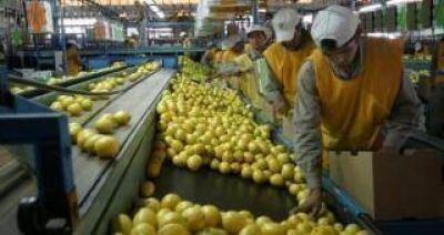 Trump suspendió por 60 días la importación de limones de Argentina