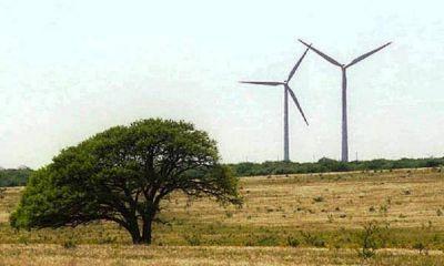 Parque eólico en Acha: 60 millones de dólares