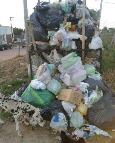 Vecinos del barrio Falucho 53 reclaman el servicio de recolección de residuos
