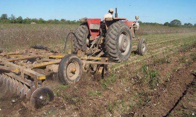 El sector agrícola pedirá apoyo de Nación para salir de la crisis