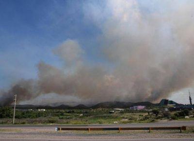 Revelaron que fueron 713 las hectáreas quemadas en Donovan