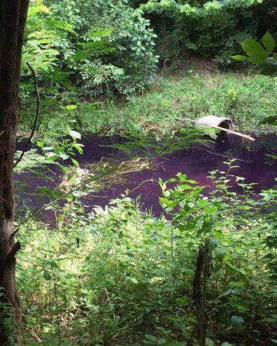 Preocupación en Luján: El arroyo Gutiérrez amaneció violeta