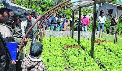 Nación financiará proyectos para mejorar la gestión productiva