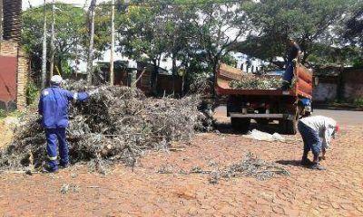 El municipio de Posadas busca reducir la creación de minibasurales