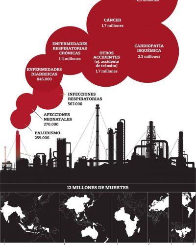 Cuáles son las principales causas de muerte relacionadas con el medio ambiente