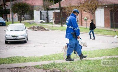 Desafectaron 19 policías locales de Mar del Plata