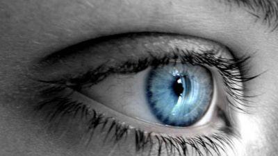 Autorizan el primer trasplante de retina con células donadas