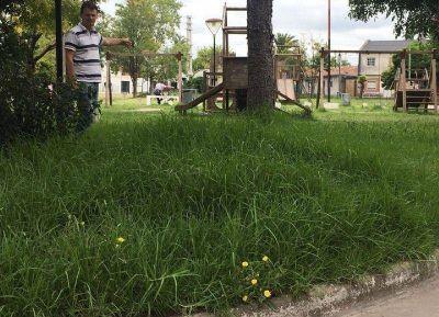 La Plata: Presentan proyecto para declarar la Emergencia en Espacios Públicos