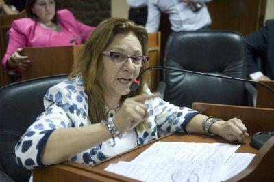 Fernández pide por la reforma de la ley de OSEP