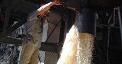 Crece el temor por la posible liberación del comercio del azúcar con Brasil