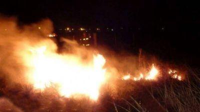 Importante incendio en la Reserva Natural de Punta Lara, humo en La Plata, Capital y el Conurbano