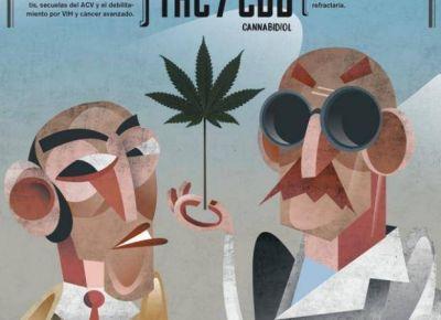 Marihuana medicinal, una alternativa que crece en San Luis