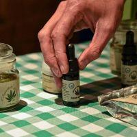 Avanza debate por el uso medicinal de la marihuana en Mendoza