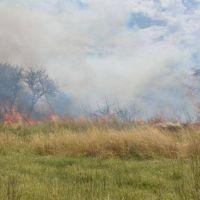Declararon la emergencia agropecuaria en La Pampa por los incendios