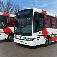 San Nicolás: Empresa Vercelli pide el aumento del boleto de transporte público