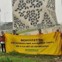Greenpeace reclamó frente al Panal por la ley de bosques
