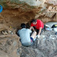 [#LaEscondida] Mega hallazgo paleontológico en el sur de la ciudad