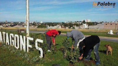 Reacondicionan diversos espacios verdes en Carmen de Patagones