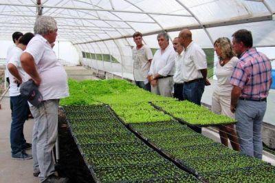 Moralejo visitó invernaderos en General Pico