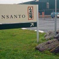 Monsanto busca evitar los controles creando un Colegio de Ingenieros Agrónomos