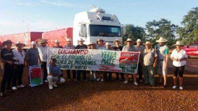 Yerbatazo en Plaza de Mayo: repartirán gratis 30 mil paquetes