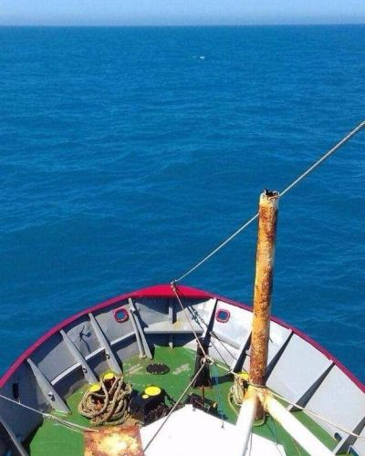 El presente de la pesca a contramano de las expectativas colectivas