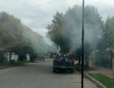 Salud confirmó un caso de dengue en Villa Mercedes