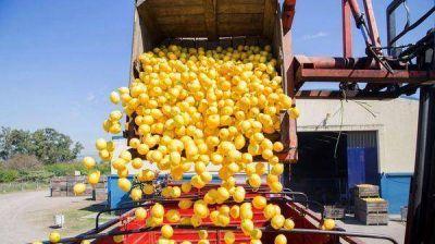 EEUU extendió la suspensión al ingreso de limones argentinos