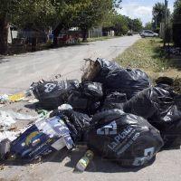 Vivir entre la basura