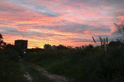 Vecinos preocupados por el desmonte de uno de los últimos pulmones verdes de la costa