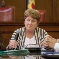 """Crovetto va al HCD: la oposición denuncia la """"provincialización"""" de la educación municipal"""