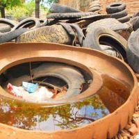 """Santiago advirtió que """"el agua estancada y las altas temperaturas facilitan la transmisión del dengue"""""""