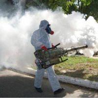 Confirmaron uno de los siete casos sospechosos de dengue en Solano