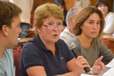Cruces, pedido de renuncia y acusaciones en la comisión de Educación