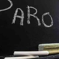 Docentes Universitarios y Preuniversitarios anunciaron un paro por 72 horas