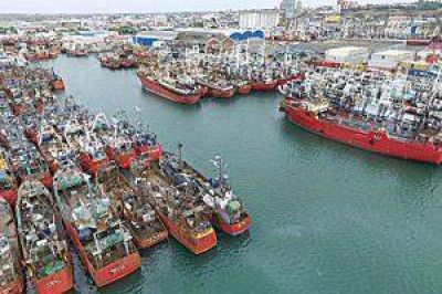 De 2015 a 2016 se triplicaron las exportaciones por el puerto