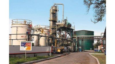 Producirán energía de caña de azúcar para abastecer a la red nacional