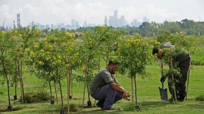 De relleno sanitario a parque público: harán un paseo verde donde había 46 millones de toneladas de basura