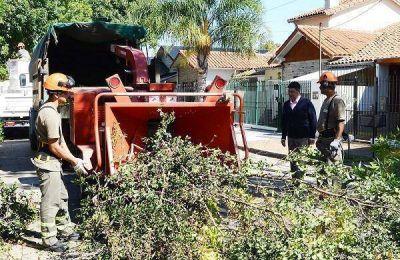 La Municipalidad de Vicente López inició el Plan de Poda para 2017
