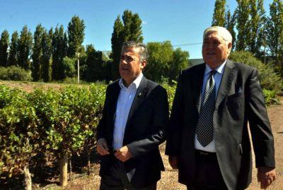 Trivento invertirá $ 75 millones en viñedos