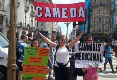 Avanza el debate sobre el uso terapéutico del cannabis en la provincia de Buenos Aires